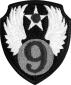 9th Air Force Emblem